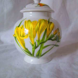 Beautiful Aynsley Miniature Ginger Jar Chelsea Daffodils Fine Bone China England