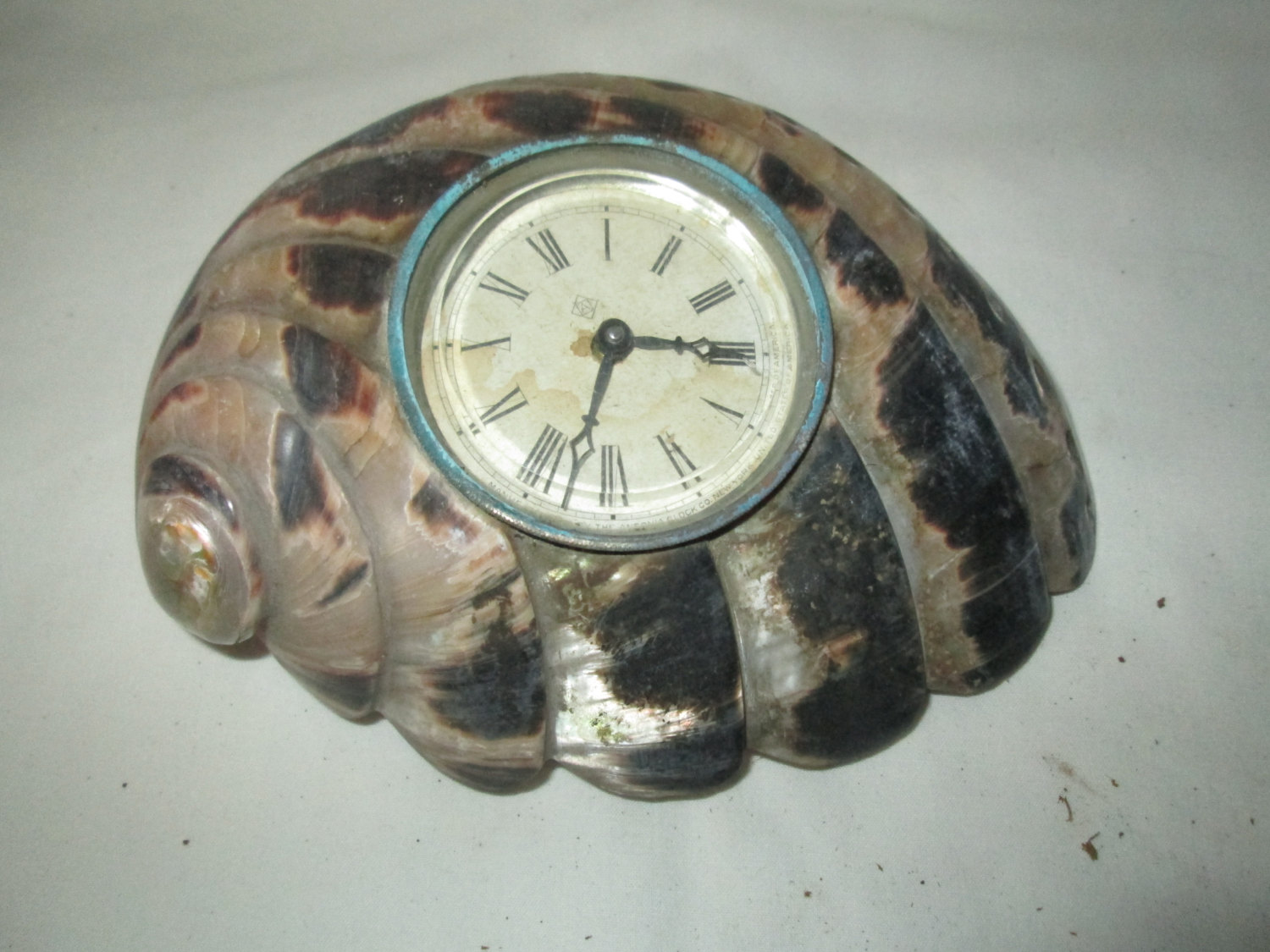 Ansonia Shell Clock 1920 S Unituqe Home Decor Art Deco Style